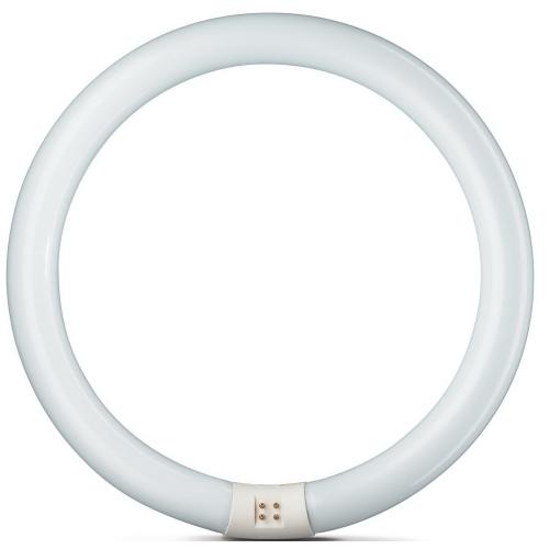 PHILIPS 22W/840 kruhová TL-E G10q kruhová zářivka