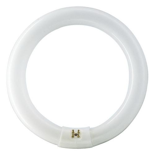 PHILIPS 32W/840 kruhová TL-E G10q kruhová zářivka